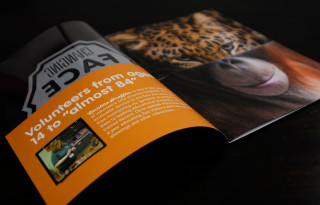 Erie Zoo Changing Faces 2014 Annual Report
