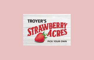 New signage for Glenn Troyer Farms strawberry farm