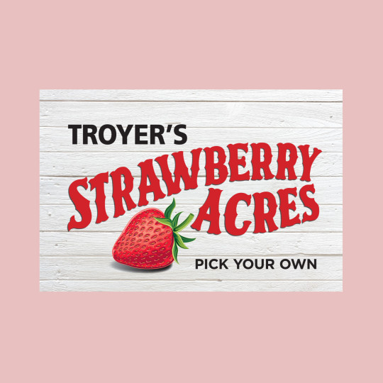 http://papaadvertising.com/wp-content/uploads/2015/05/Strawberry_sign_1600x25001-540x540.jpg