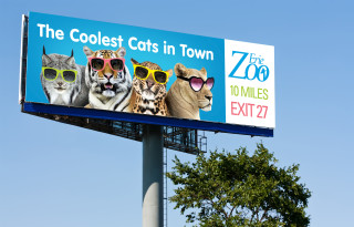 "The Erie Zoo ""Cool Cats"" Outdoor board"